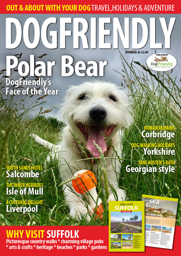 Dogfriendly Magazine